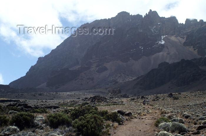 tanzania51: Tanzania - Kilimanjaro NP: Marangu Route - day 3 - approaching Mawenzi hut - photo by A.Ferrari - (c) Travel-Images.com - Stock Photography agency - Image Bank