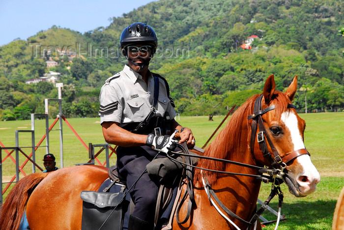 trinidad-tobago50: Port of Spain, Trinidad: mounted policeman - photo by E.Petitalot - (c) Travel-Images.com - Stock Photography agency - Image Bank