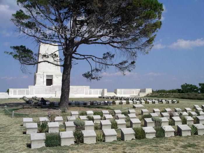 turkey150: Turkey - Gallipoli / Gelibolu (Çanakkale province): lone pine in a World War I memorial - photo by R.Wallace - (c) Travel-Images.com - Stock Photography agency - Image Bank