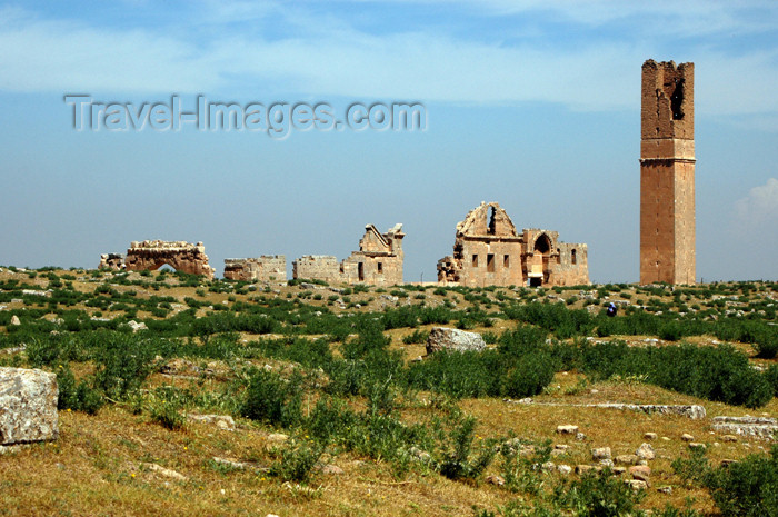 turkey301: Turkey - Harran (Sanli Urfa province): ancient Carrhes - architecture from the period of Umayyad Caliph - photo by C. le Mire - (c) Travel-Images.com - Stock Photography agency - Image Bank