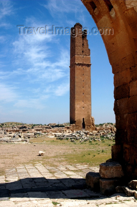turkey303: Harran, Sanli Urfa province, Turkey: ruins of the ancient Carrhes - astronomical / astrological tower - Ayyubid buildings - photo by C. le Mire - (c) Travel-Images.com - Stock Photography agency - Image Bank