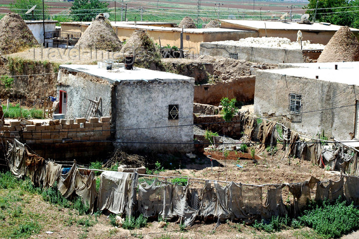 turkey306: Turkey - Harran: beehive houses built in adobe - vegetable-garden - photo by C. le Mire - (c) Travel-Images.com - Stock Photography agency - Image Bank