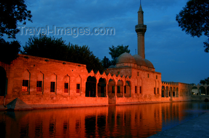 turkey576: Urfa / Edessa / Sanliurfa, Southeastern Anatolia, Turkey: pool of Sacred Fish - Balikligöl - mosque of Halil-ur-Rahman mosque, built by the Ayyubids in 1211 - nocturnal - photo by J.Wreford - (c) Travel-Images.com - Stock Photography agency - Image Bank