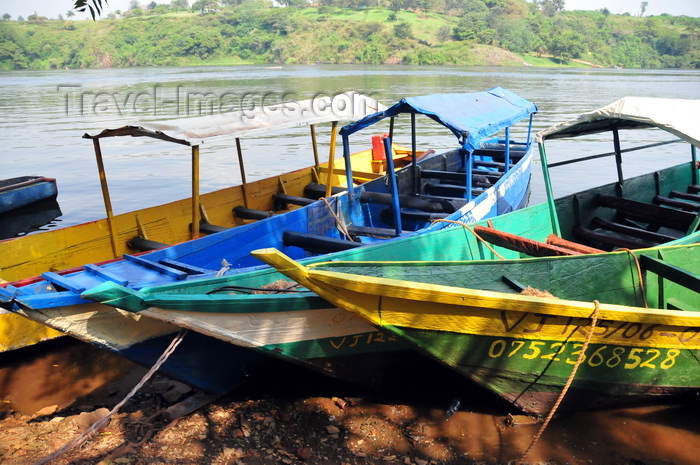 uganda144: Jinja, Uganda: source of the Nile river - boats on the eastern bank of the river - photo by M.Torres - (c) Travel-Images.com - Stock Photography agency - Image Bank