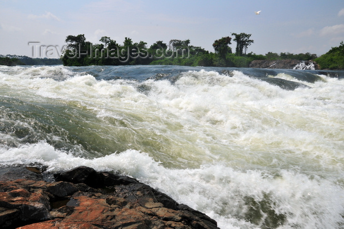 uganda153: Bujagali Falls, Jinja district, Uganda: fast water flow on a step on the river Nile - seen from the Eastern bank - in 2012 the falls were submerged by the Bujagali Dam - photo by M.Torres - (c) Travel-Images.com - Stock Photography agency - Image Bank