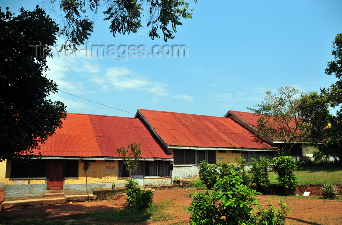 uganda169: Entebbe, Wakiso District, Uganda: red roofed houses on Hill Road - photo by M.Torres - (c) Travel-Images.com - Stock Photography agency - Image Bank