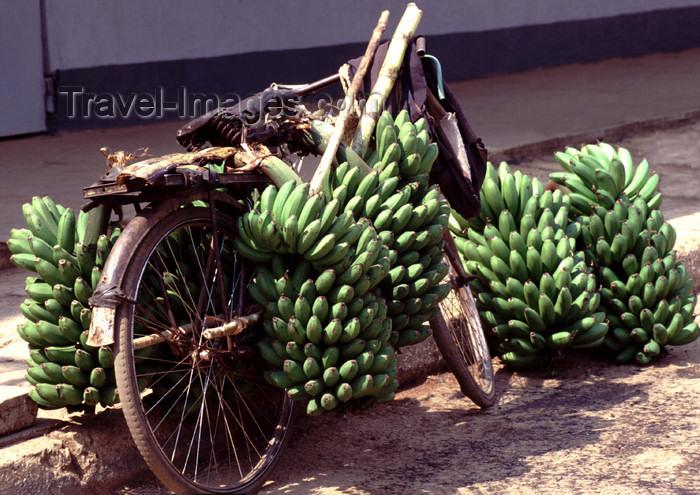 uganda32: Uganda - Fort Portal - bananas on a bike - photos of Africa by F.Rigaud - (c) Travel-Images.com - Stock Photography agency - Image Bank