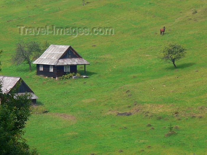 ukra91: Transcarpathia / Zakarpattya, Ukraine: countryside around Jablonica - green slope with rural houses - photo by J.Kaman - (c) Travel-Images.com - Stock Photography agency - Image Bank