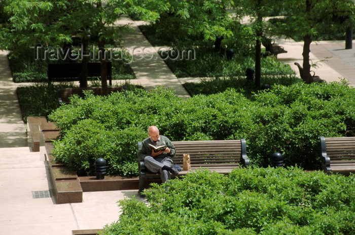 usa1072: Chicago, Illinois, USA: tranquility in the city - a gentleman enjoys reading his book in one of the many Chicago river front parks - photo by C.Lovell - (c) Travel-Images.com - Stock Photography agency - Image Bank