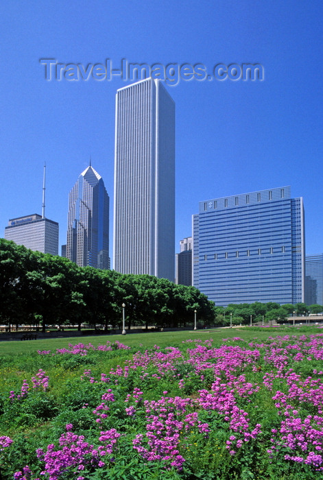 usa1078: Chicago, Illinois, USA: skyscrapers backdrop a field of purple wildflowers in Grant Park - downtown - One and Two Prudential Plaza, Aon Center and Blue Cross and Blue Shield tower - photo by C.Lovell - (c) Travel-Images.com - Stock Photography agency - Image Bank