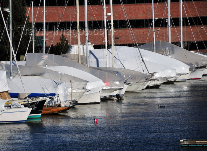 usa1142: Boston, Massachusetts, USA: Charlestown - Constitution Marina - yachts moored and covered for the winter - photo by M.Torres - (c) Travel-Images.com - Stock Photography agency - Image Bank