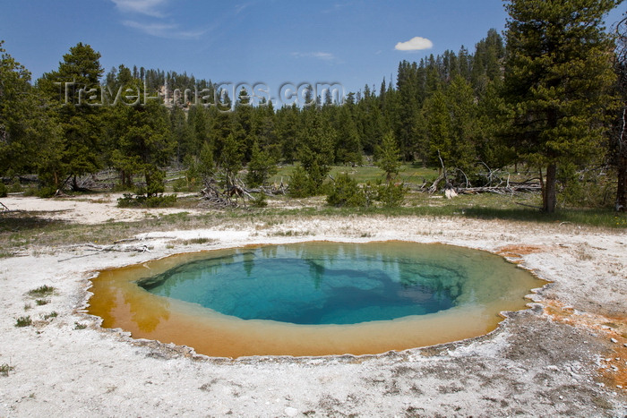usa1294: Yellowstone National Park, Wyoming, USA: a hot spring near Nez Perce Creek is one of thousands of thermal features in the park - photo by C.Lovell - (c) Travel-Images.com - Stock Photography agency - Image Bank