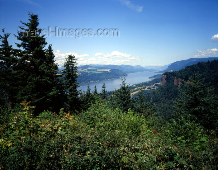 usa139: USA - Crown Point (Oregon): Columbia River Gorge - photo by J.Fekete - (c) Travel-Images.com - Stock Photography agency - Image Bank