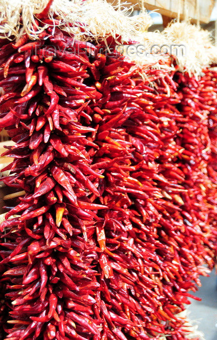usa1561: Santa Fé, New Mexico, USA: ristras - dried red chili peppers pods are offered for sale in long strings - hanging strands - clusters - photo by M.Torres - (c) Travel-Images.com - Stock Photography agency - Image Bank