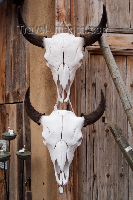 usa1580: Santa Fé, New Mexico, USA: cattle skulls for sale at the Mercado Trading Post - the cow skull is an icon of the old west - rustic wall decoration - photo by C.Lovell - (c) Travel-Images.com - Stock Photography agency - Image Bank