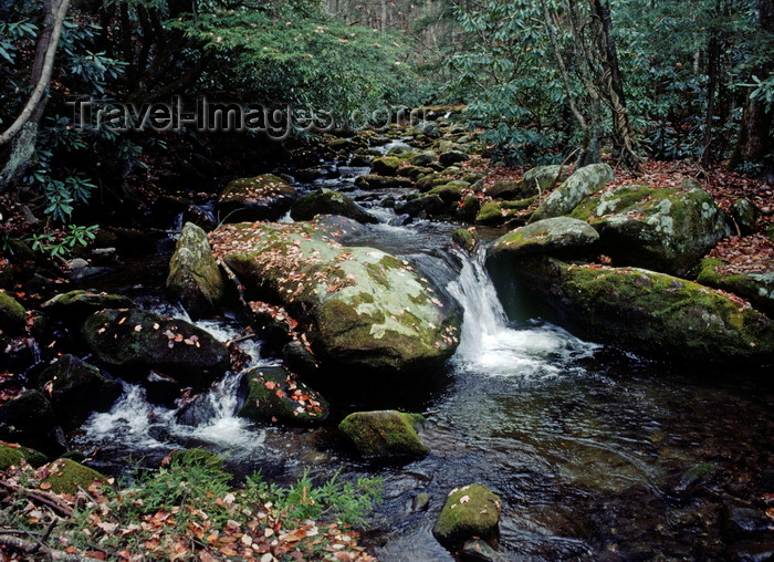 usa304: Great Smoky Mountains National Park, Tennessee, USA: stream and boulders in autumn forest - UNESCO World Heritage Site - once Cherokee territory - photo by C.Lovell - (c) Travel-Images.com - Stock Photography agency - Image Bank