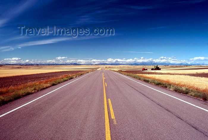 usa511: USA - Montana: road till the horizon - American road - on the road - photo by J.Fekete - (c) Travel-Images.com - Stock Photography agency - Image Bank