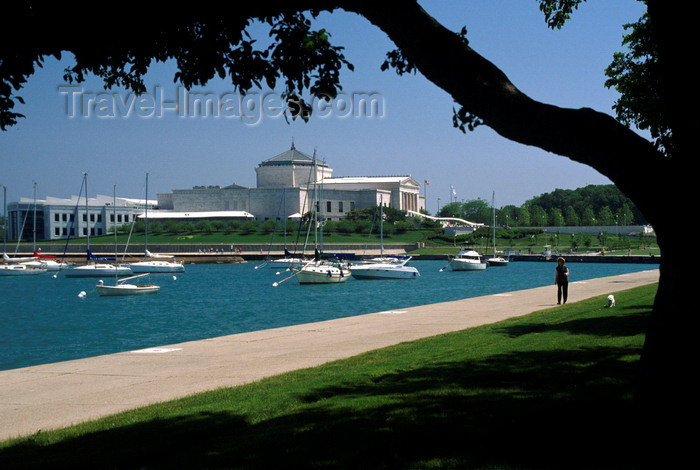 usa532: Chicago, Illinois, USA: sail boats at anchor on Lake Michigan with the John G Shedd Aquarium behind - S. Lake Shore Drive - photo by C.Lovell - (c) Travel-Images.com - Stock Photography agency - Image Bank