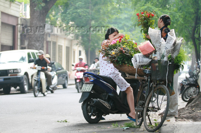 vietnam88: Hanoi - Vietnam - flower vendor on bike and client on a scooter - photo by Tran Thai - (c) Travel-Images.com - Stock Photography agency - Image Bank