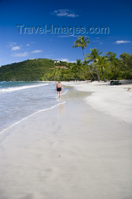 virgin-us44: US Virgin Islands - St. Thomas - Magens Bay: beach - white sand and coconut trees (photo by David Smith) - (c) Travel-Images.com - Stock Photography agency - Image Bank