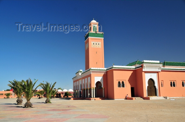 western-sahara107: Laâyoune / El Aaiun, Saguia el-Hamra, Western Sahara: palm trees and Moulay Abdel Aziz Great Mosque - photo by M.Torres - (c) Travel-Images.com - Stock Photography agency - Image Bank