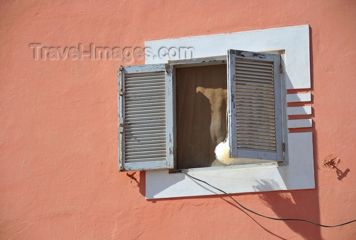 western-sahara16: Laâyoune / El Aaiun, Saguia el-Hamra, Western Sahara: window behind the Cathedral - drying a pouf mesh sponge - photo by M.Torres - (c) Travel-Images.com - Stock Photography agency - Image Bank