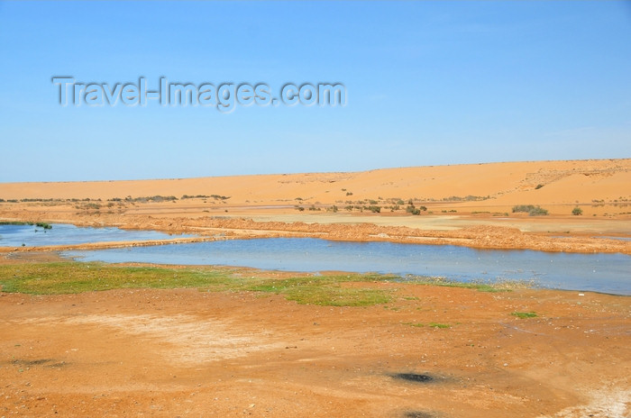 western-sahara48: Laâyoune / El Aaiun, Saguia el-Hamra, Western Sahara: Oued Saqui el-Hamra - seasonal river - photo by M.Torres - (c) Travel-Images.com - Stock Photography agency - Image Bank