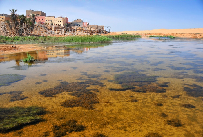 western-sahara54: Laâyoune / El Aaiun, Saguia el-Hamra, Western Sahara: Oued Saqui el-Hamra - El Aaiun means 'water pools' - photo by M.Torres - (c) Travel-Images.com - Stock Photography agency - Image Bank