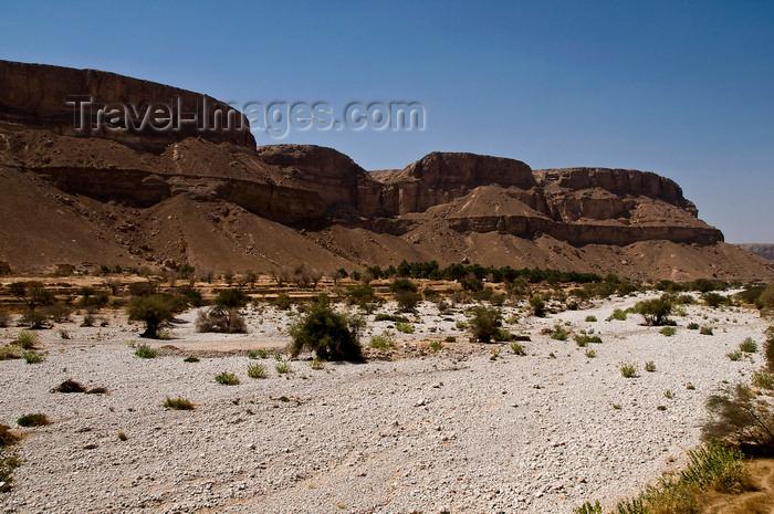 yemen65: Wadi Hadramawt, Hadhramaut Governorate, Yemen: wadi floor and cliffs - dry river bed - valley view - photo by J.Pemberton - (c) Travel-Images.com - Stock Photography agency - Image Bank