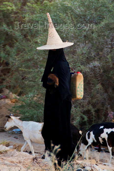 yemen74: Wadi Hadhramaut, Hadhramaut Governorate, Yemen: local woman tending goats - she carries a baby goat and a jerry-can and wears an abaya and a madhalla conical hat, made of dried palm leaves - photo by J.Pemberton - (c) Travel-Images.com - Stock Photography agency - Image Bank