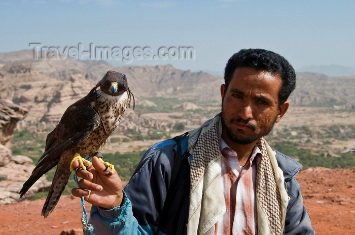 yemen8: Wadi Dhahr, Al-Mahwit Governorate, Yemen: man with falcon, valley in the background - falconry - falconer - huntsman - photo by J.Pemberton - (c) Travel-Images.com - Stock Photography agency - Image Bank