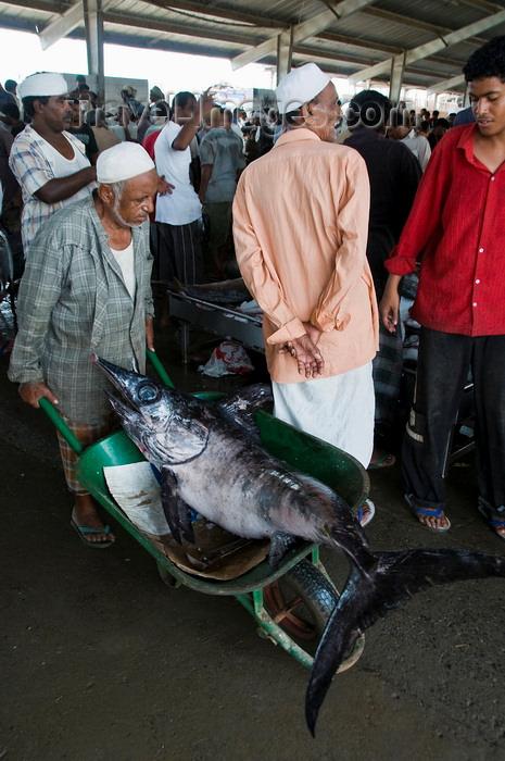 yemen91: Al Hudaydah / Hodeida, Yemen: transporting a large Swordfish in a wheelbarrow - morning fish market. - photo by J.Pemberton - (c) Travel-Images.com - Stock Photography agency - Image Bank