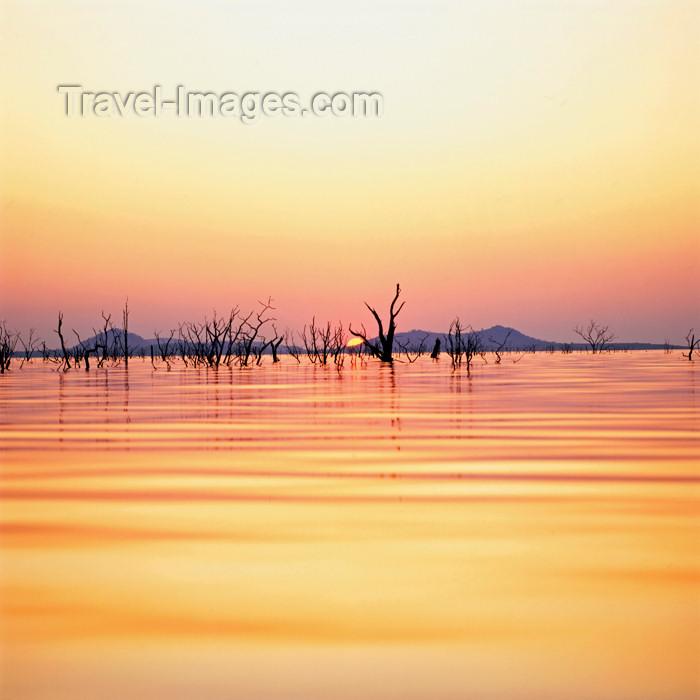 zimbabwe15: Zimbabwe - Lake Kariba, Mashonaland West province: sunset and dead forest - reservoir located on the Zambezi river - photo by W.Allgower - (c) Travel-Images.com - Stock Photography agency - Image Bank
