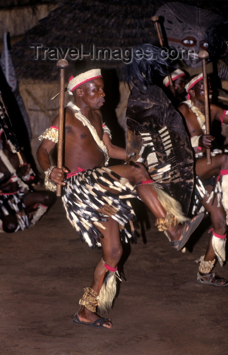 zimbabwe30: Matabeleland North province, Zimbabwe: Zulu war dance - a Northern Ndebele tribal dancer displays his fierceness and wears animal skins - Matabele - photo by C.Lovell - (c) Travel-Images.com - Stock Photography agency - Image Bank