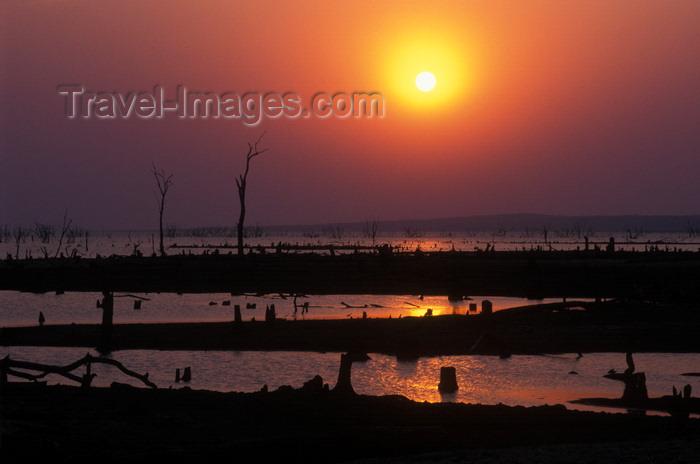 zimbabwe33: Lake Kariba, Mashonaland West province, Zimbabwe: sunset and dead trees - drowned forest - photo by C.Lovell - (c) Travel-Images.com - Stock Photography agency - Image Bank