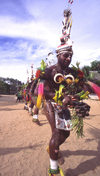 PNG - Papua New Guinea - Row of colorful dancers, Tuam Island - photo by B.Cain