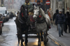 Poland - Krakow: horses and carriage in Rynek - photo by M.Gunselman