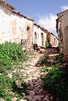 Portugal - Algarve - Pena (concelho de Loulé): farm lane - viela rural - photo by T.Purbrook
