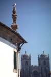Portugal - Porto: a Sé - gaivota /  the Cathedral - seagull - photo by F.Rigaud