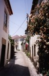 Portugal - Ourém: viela com rosas - vila velha / Ourém: alley with roses - photo by M.Durruti