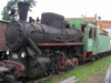 Russia - Pereslavl-Zalessky area: rusting steam locomotive - narrow gauge railway open-air museum - train - photo by J.Kaman