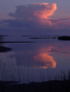 Russia - Arkhangelsk Oblast: evening clouds - reflection on the White Sea - photo by J.Kaman