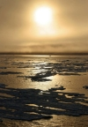 Russia - Wrangel Island / ostrov Vrangelya (Chukotka AOk): sunset - Chukchi Sea - UNESCO World Heritage Site (photo by R.Eime)