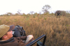South Africa - Observing an elephant from vehicle, Singita - photo by B.Cain