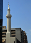 Johannesburg, Gauteng, South Africa: the city's Friday Mosque - corner of Kerk Sr and Sauer St - CBD - photo by M.Torres