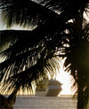 St Lucia: La Soufri�re - cruise ship and palm - photo by P.Baldwin