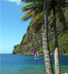 St Lucia: La Soufri�re - palms and the eastern Caribbean Sea - photo by P.Baldwin