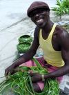 St Vincent and the Grenadines - Bequia island (Grenadines): David, the weaver (photographer: P.Baldwin)