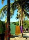 St Vincent and the Grenadines - Bequia island: sarongs (photographer: Pamala Baldwin)