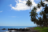 Esprainha, Lemb� district, S�o Tom� and Pr�ncipe / STP: coconut-tree lined coast / costa e coqueiros - photo by M.Torres